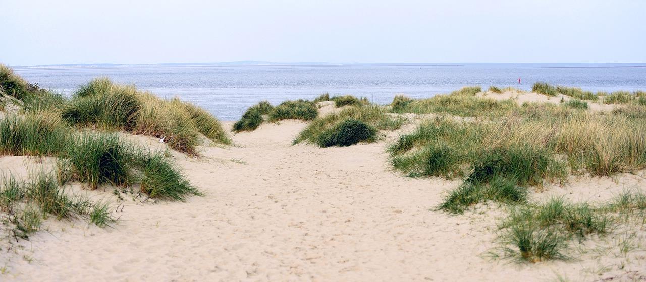 Duinen Texel Noordzee